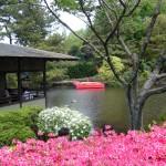 2010-05-03 小室山つつじ祭